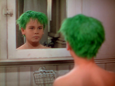 The Boy With Green Hair Deathless Prose